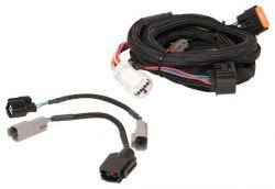 MSD Harness, Ford (4R70W/75W) 98-Up