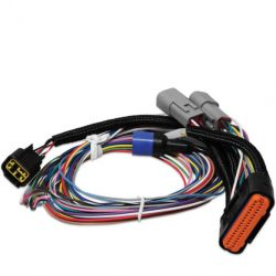 MSD Harness Replacement, 7730, Power Grid
