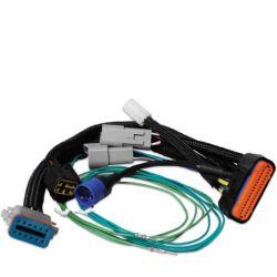 MSD Harness Adaptor, 7730 to Digital-7 Prog