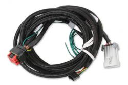 MSD Harness,LS-Input,Can,Replacement,8000