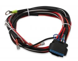 MSD Replacement Harness for 6425 & 6201